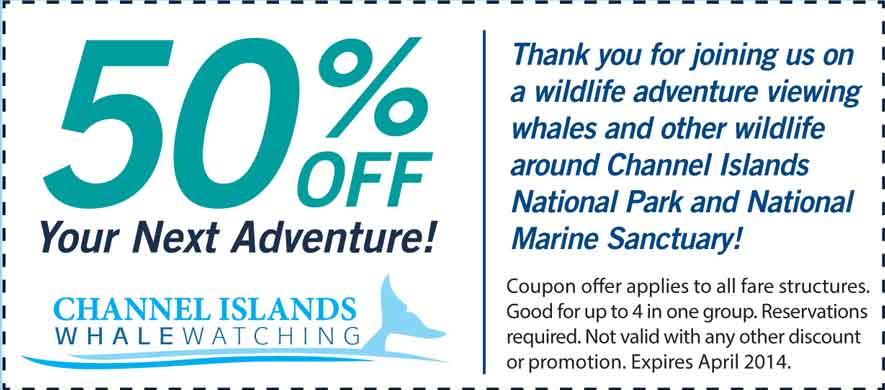 Channel Islands Whale Watching Coupon