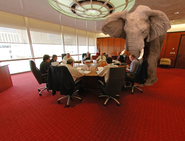 Elephant in Room: The Final Code Internet Marketing Firm